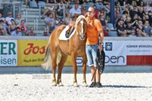Mustang Makeover Academy @ CHIO Aachen